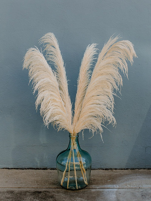 Large Droopy Pampas // Ivory