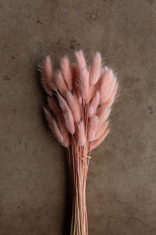 Bunny Tails // Pink