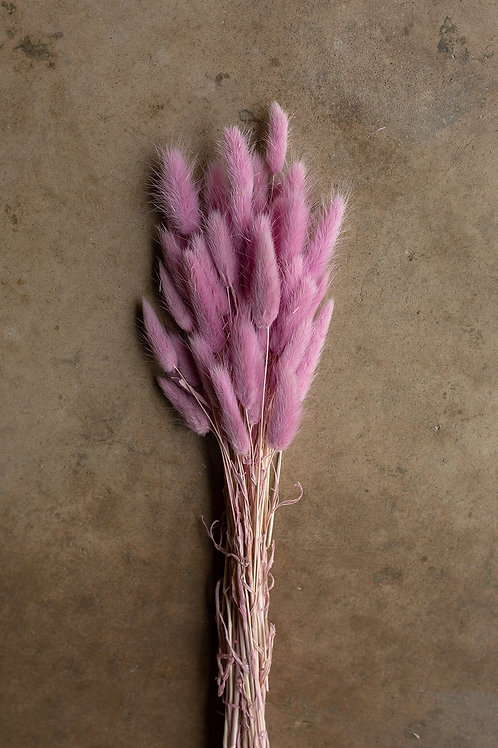 Bunny Tails // Lavender