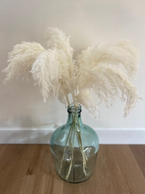 3FT Droopy Pampas // White