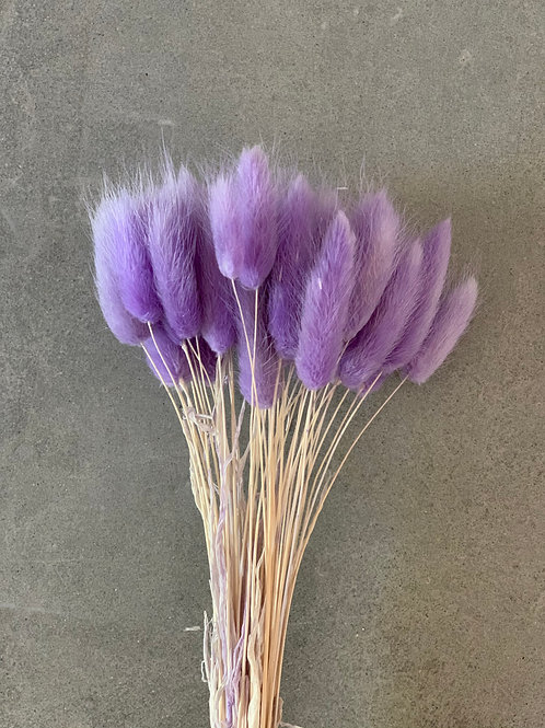 Bunny Tails // Purple