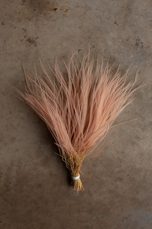 Feather Grass // Pink