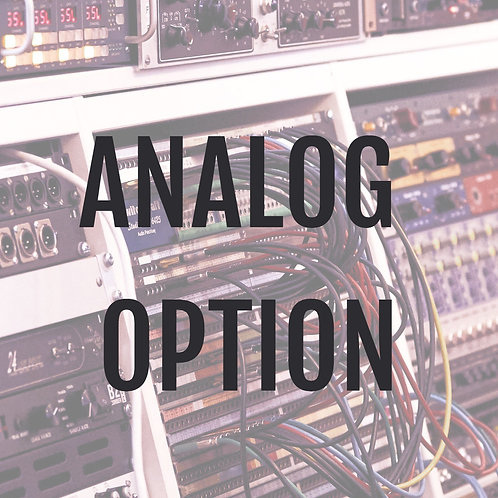 ANALOG OPTION