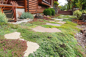 Ecological Design and Landscaping