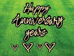 anniversary flash.JPG