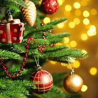 Tradiciones y costumbres navideñas