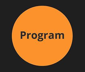 program website.jpg