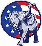 Elephant and circle background.jpg