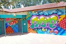 יום אמנויות תרבות רחוב לבני נוער ובתי ספר