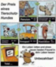 Preis eines Tierschutzhundes.jpg