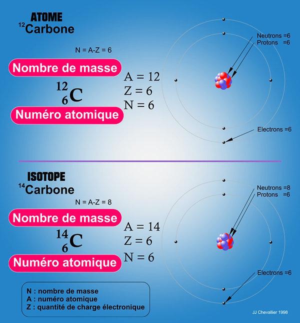 Isotope ; carbone 12 et carbone 14