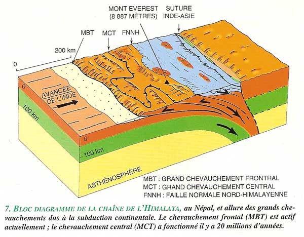 Subduction de l'Inde orogénèse de l'Himalaya.