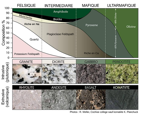 Classification des roches magmatiques selon la composition.