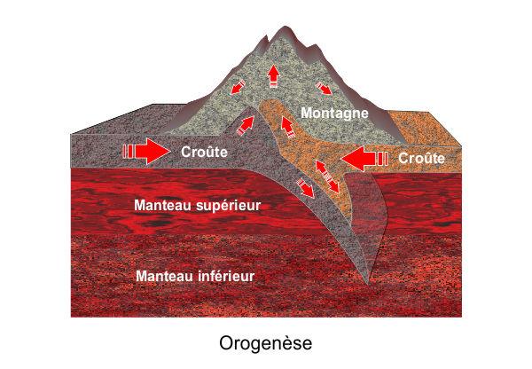 Orogenèse en coupe.