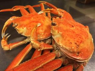 一足先に冬の味覚【蟹を楽しむ】