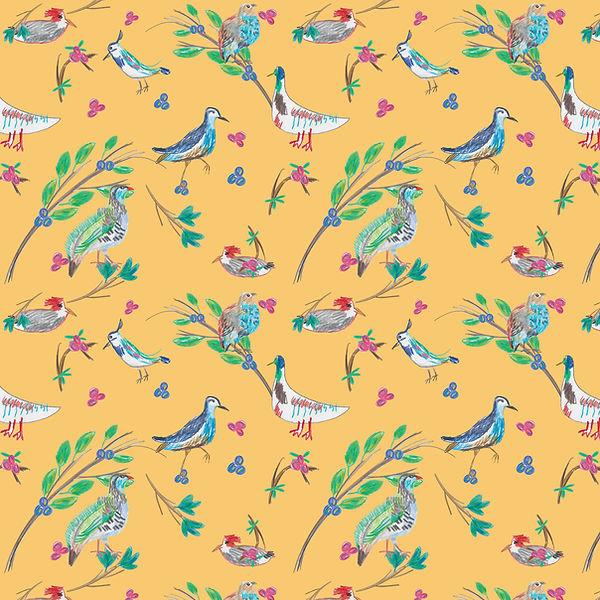 oiseaux-et-branche,-crayons.jpg