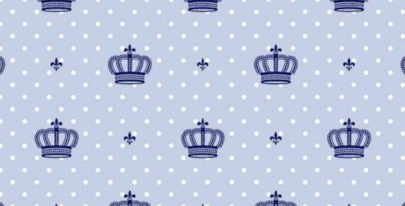 Ninho Baby - Coroa Azul