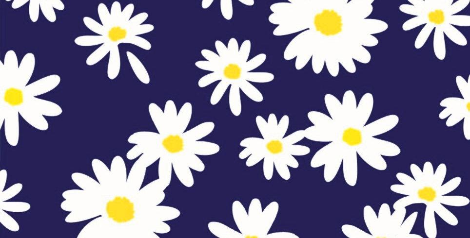 Ninho Baby - Margarida Azul Marinho