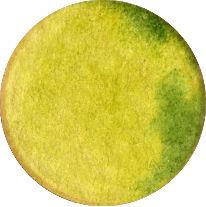 dots4.jpg