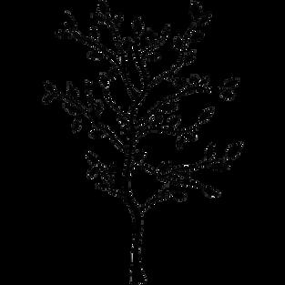 tree bg.png