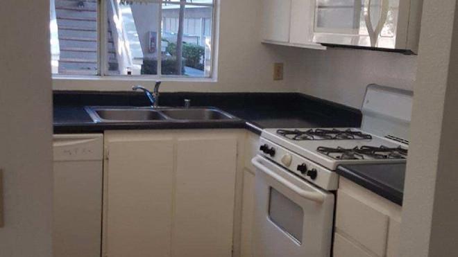 Downstairs 1+1 Kitchen - 700 sq.ft.