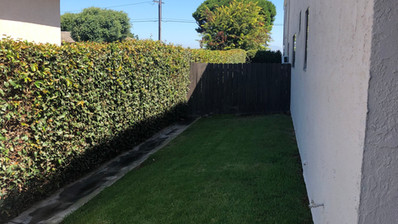 1+1 Downstairs Unit - 1025 sq.ft Outside off patio