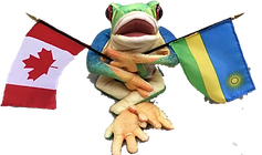 frogflags.png