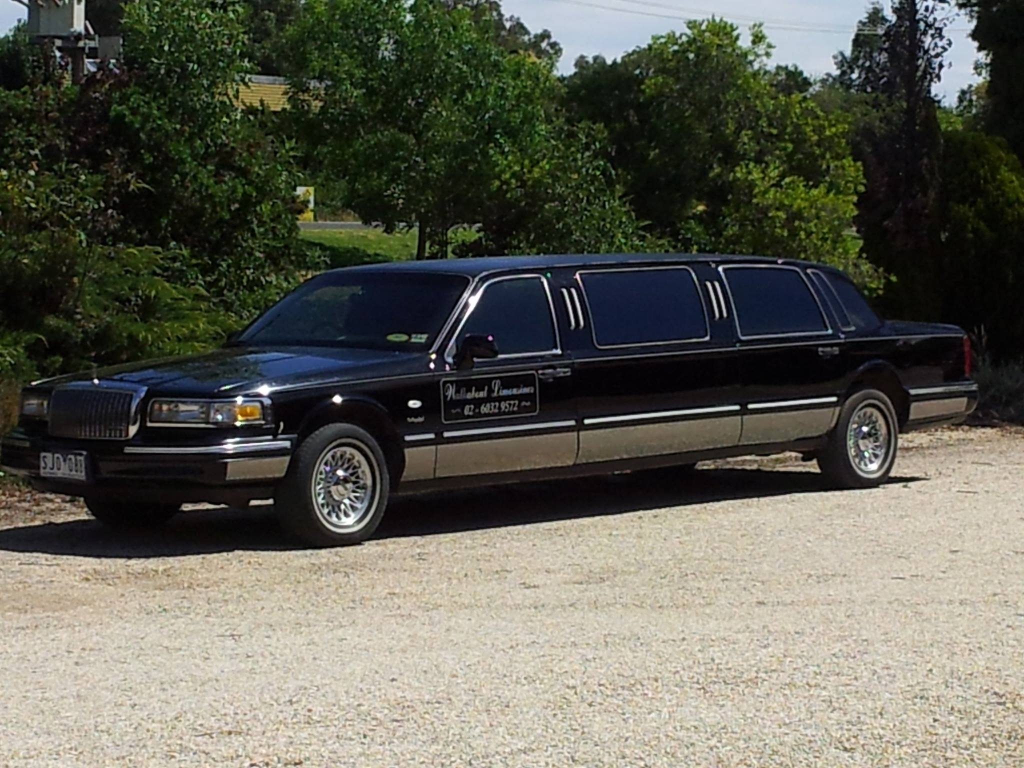 Walkabout limo.jpg
