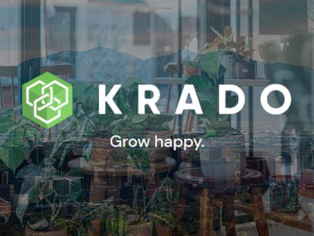 Krado raises over $400,000 pre-seed