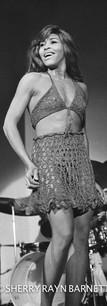 TINA TURNER 1969, Sherry Rayn Barnett.jp