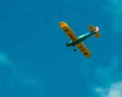 # - 178 - 616 - Blue & Yellow