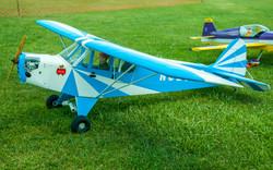 # - 506 - Blue & White Cub