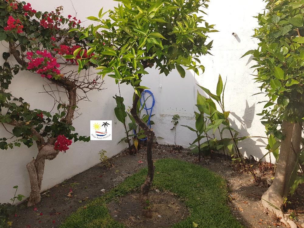 Las Palmas 14a - Private garden