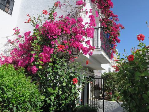 Pueblo Los Arcos - Entrance