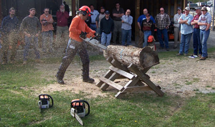 Chainsaw safety, Chainsaw safety and productivity,