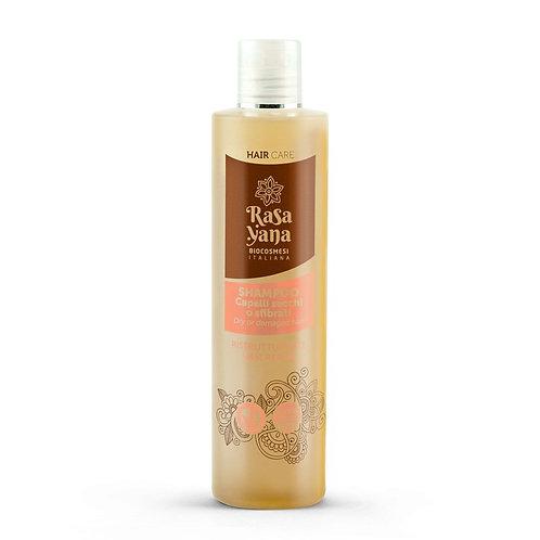 Shampoo Ristrutturante Capelli Secchi e Sfibrati 260 ml