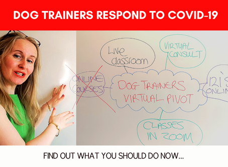 COVID-19: Action Plan For Dog Trainers