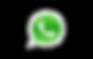 WhatsApp ginecologo saltillo.png