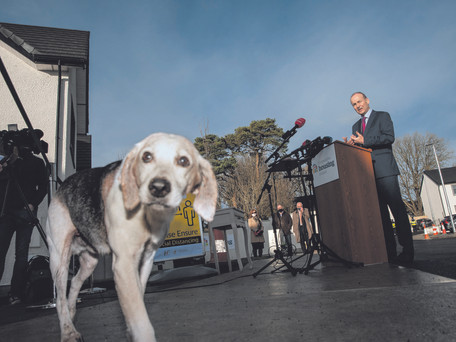 Local Dog Steals The Show For Taoiseach's Carrigaline Visit