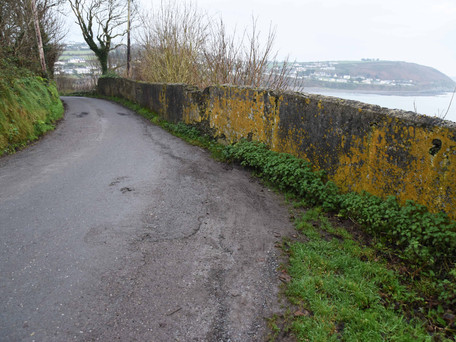 Crosshaven Needs 'Stop and Go' System on Myrtleville-Fountainstown Road
