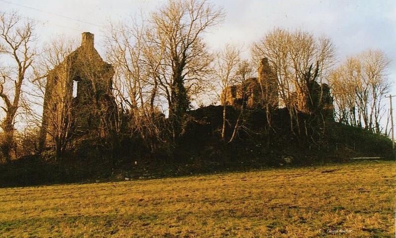 Carrigaline Castle, Daniel Gookin's base in Ireland. Credit Gerry Ahern