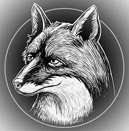 Fox%20image_edited.jpg