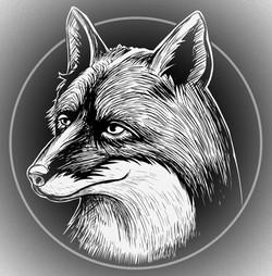 Logan Fox