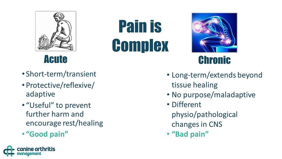 CAM - Acute Pain vs. Chronic Pain.jpg