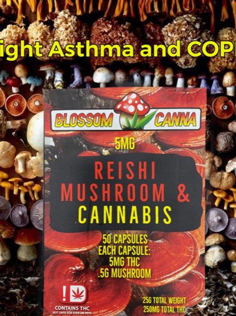 Reishi Mushroom and Cannabis