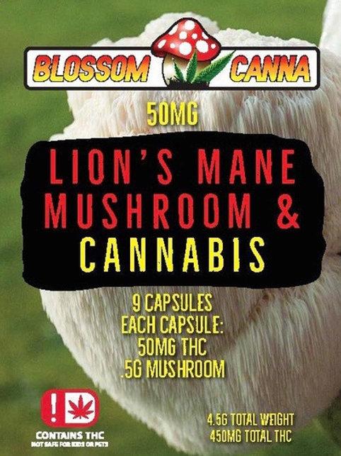 Lion's Mane Mushroom & Cannabis Capsule