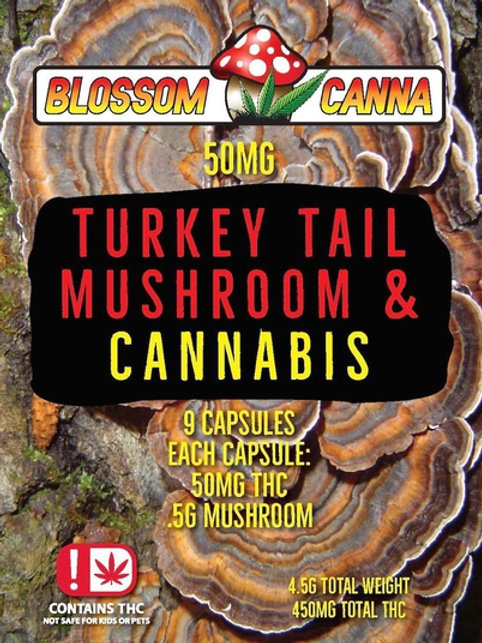Turkey Tail Mushroom & Cannabis Capsules