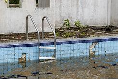 The old pool weed moss..jpg