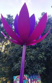 Planting festival . Lotus