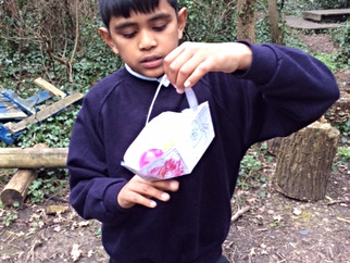 3MB hunt for Easter Eggs in the woods.